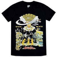 GREEN DAY 1994 Tour Tシャツ