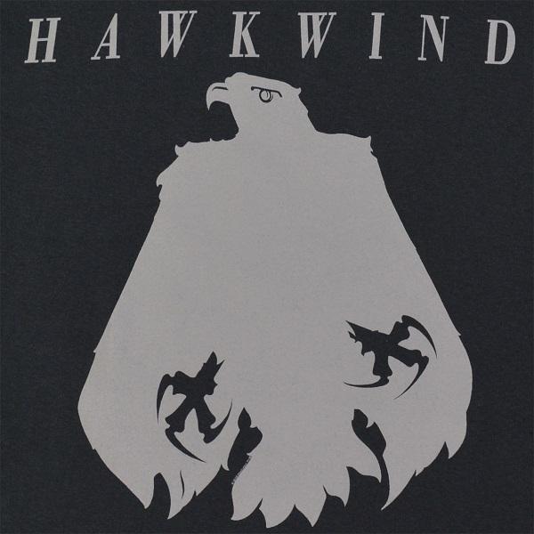hawk eagle2