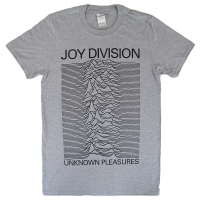 JOY DIVISION Unknown Pleasures Tシャツ GREY