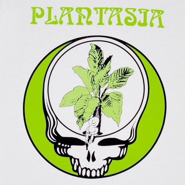 Mort-plant2