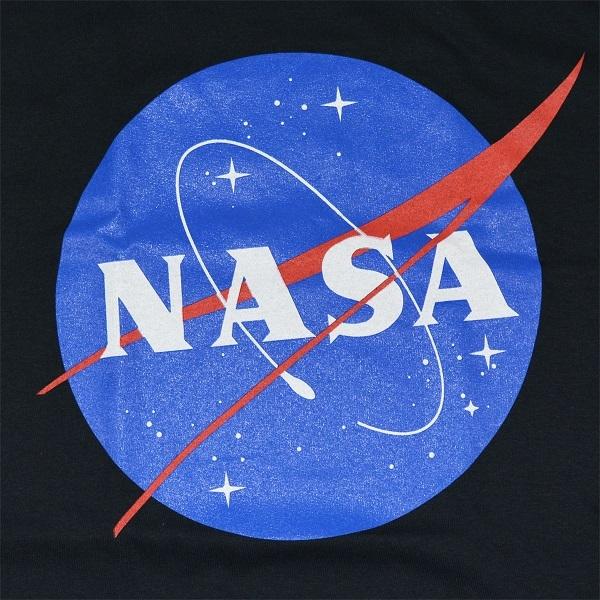 NASA lnsignia LogoBLACK2